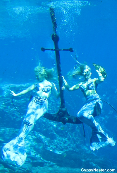 The GypsyNesters   Mermaids Are Real (we have proof)!
