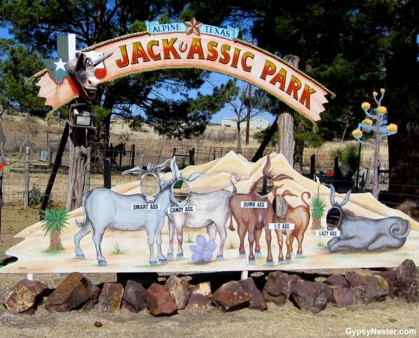Jackassic Park by GypsyNester.com