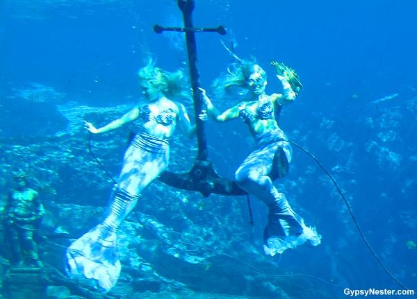 The Mermaids of Weeki Wachi Springs by GypsyNester.com