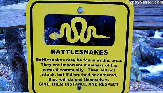 Rattlesnake Warning at Anna Ruby Falls