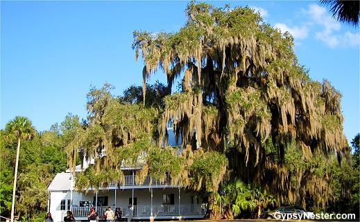 Blue Springs State Park, Florida