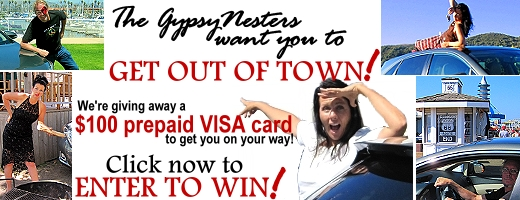Win a $100 VISA Card! Win a $100 VISA Card!