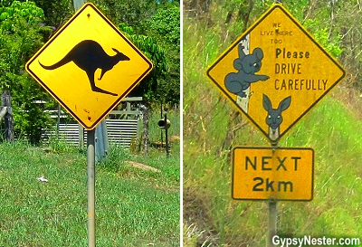 Kangaroo and Koala signs in the Hinterlands of Queensland, Australia