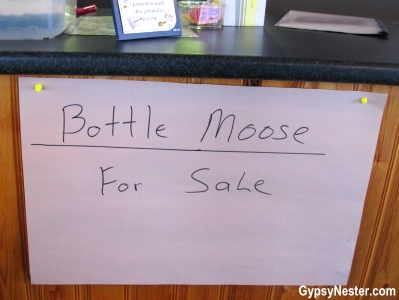 Bottle Moose for sale at the Gannet's Nest in St. Brides, Newfoundland