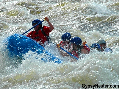 Whitewater rafting on the Exploits River in Grand Falls - Windsor, Newfoundland, Canada