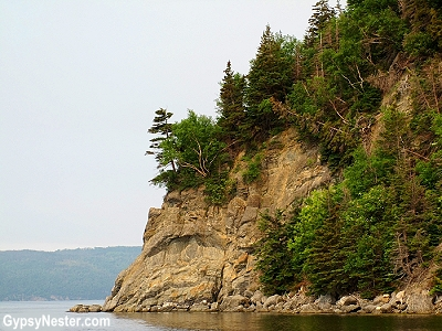 A beautiful cliff face in Bay of Islands, Newfoundland