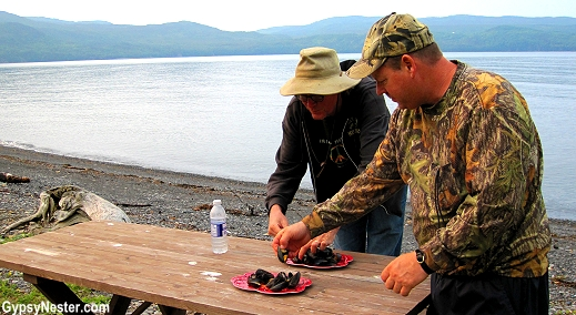 Fresh mussels at the fishing cabin in Newfoundland