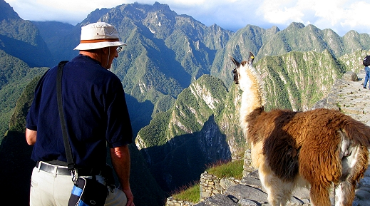 A llama blocks our path in Machu Picchu