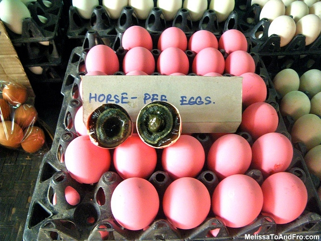 Horse Pee Eggs fro Melissa of Melissa To and Fro