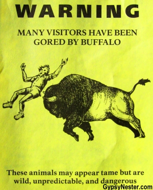 Retro buffalo warning flyer at Yellowstone National Park