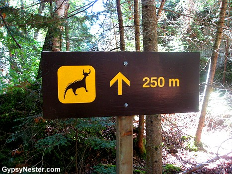 Sooooo... we're walking in the woods, deep in Canada and come up on this sign. What exactly is out there?
