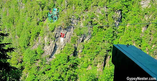 Ziplining three hundred feet in the air with Marble Zip Tours in Newfoundland